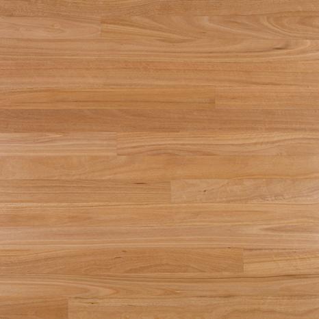Outback Flooring Australian Beech